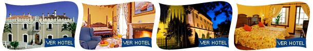 http://www.hotusahotels.com/imagenes/Domus/111109/linea1.jpg
